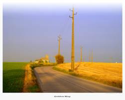 Golden Way by eVolutionZ