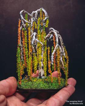 Handmade bonsai tree - The weeping birch