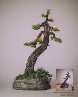 Handmade bonsai tree (rock pottery) by eVolutionZ