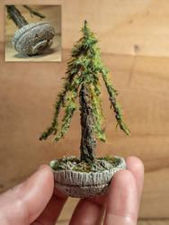 The mighty ancient (Handmade sculpted bonsai)