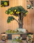 Miniature lemon tree (glassbell)