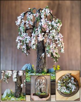 The weeping fruit tree (in bloom)