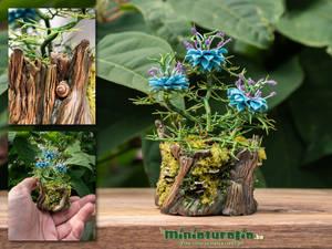 Nigella Damascena Tree Stump