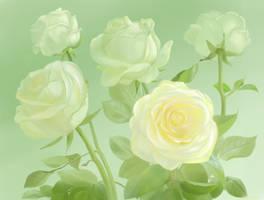 <b>White Roses</b><br><i>yellika</i>