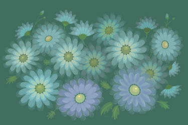 Asters by yellika