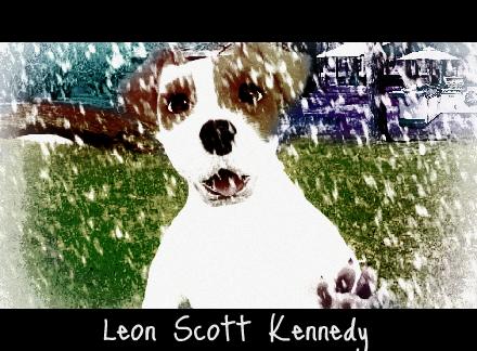 Leon Scott Kennedy The Dog by DontYouDareKickThat4
