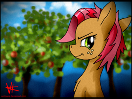 Babs Seed by unitoone