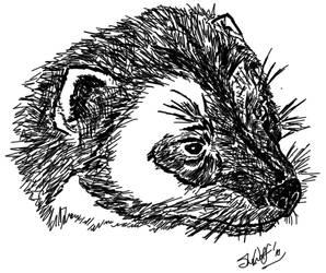 Big Weasel