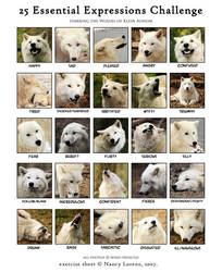 Wolf Expressions