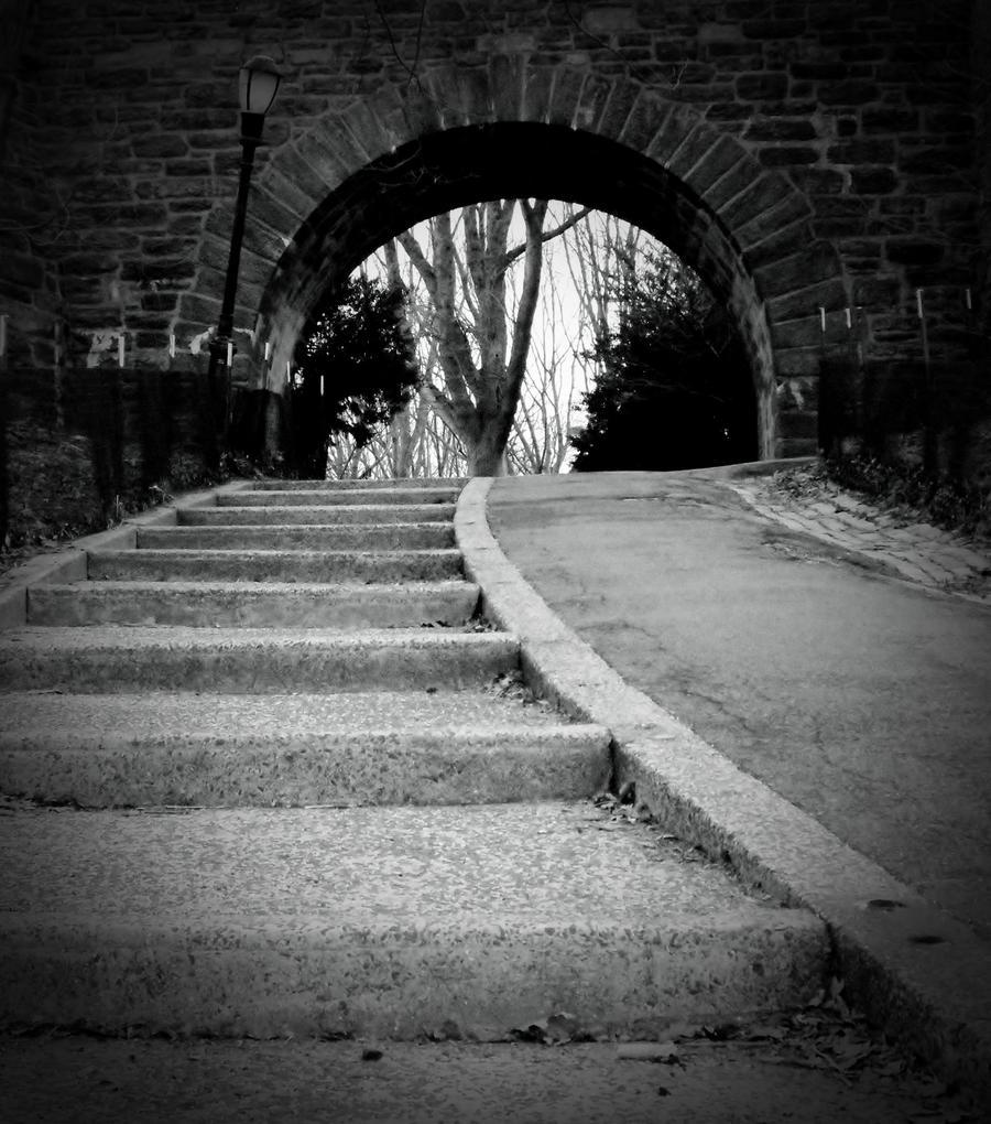 Choose A Path