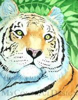 The Tiger by Alina-Kurbiel