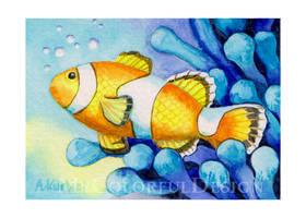 Clown Fish by Alina-Kurbiel