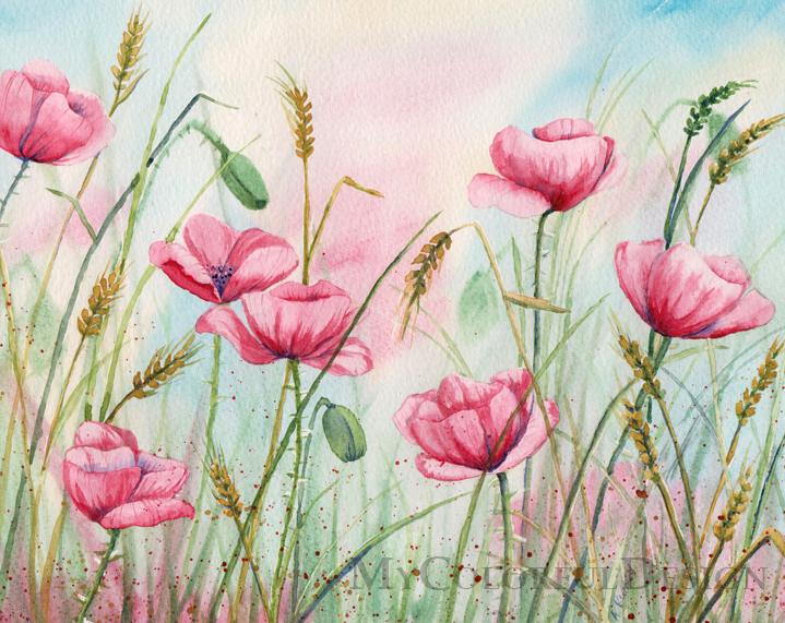 Poppy Flowers by Alina-Kurbiel