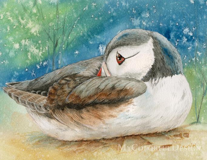 The Puffin by Alina-Kurbiel