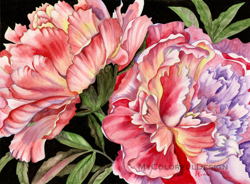 Pink Peonies by Dusty-Feather