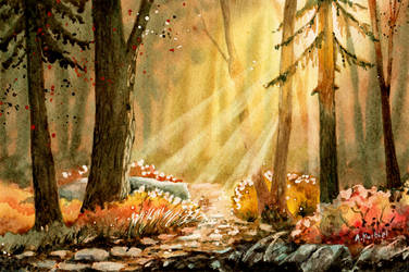 Morning Light by Alina-Kurbiel