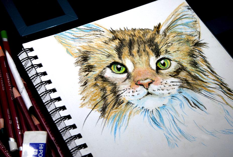 A Cat with Green Eyes by Alina-Kurbiel