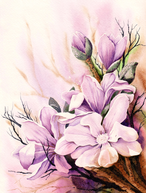 Magnolia by Alina-Kurbiel