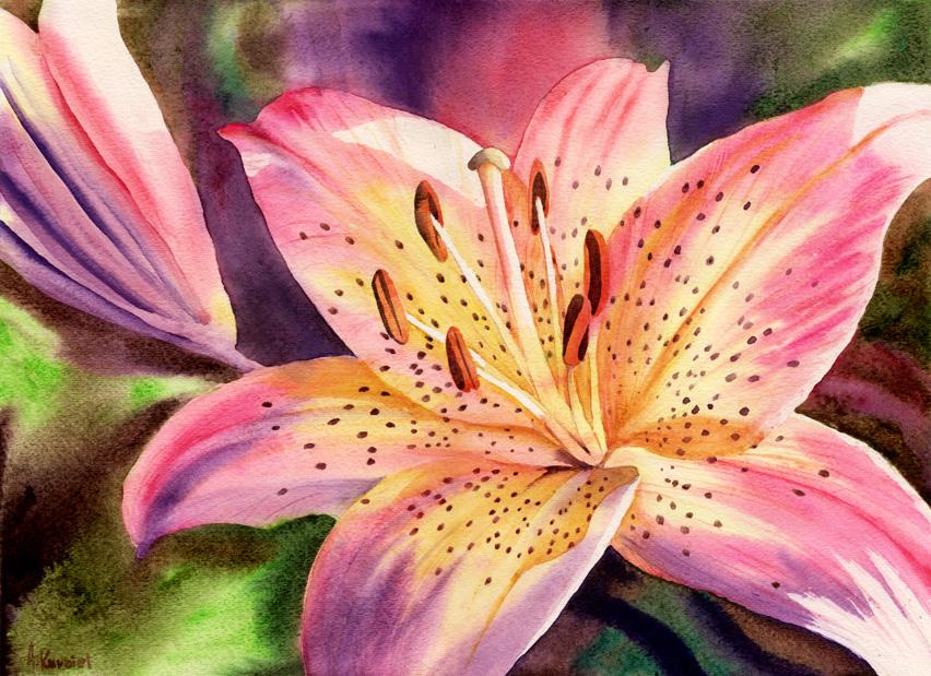 Lily by Alina-Kurbiel