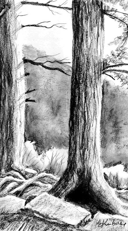 Trees by Alina-Kurbiel