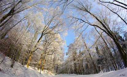 My neighborhood in the snow by Patguli