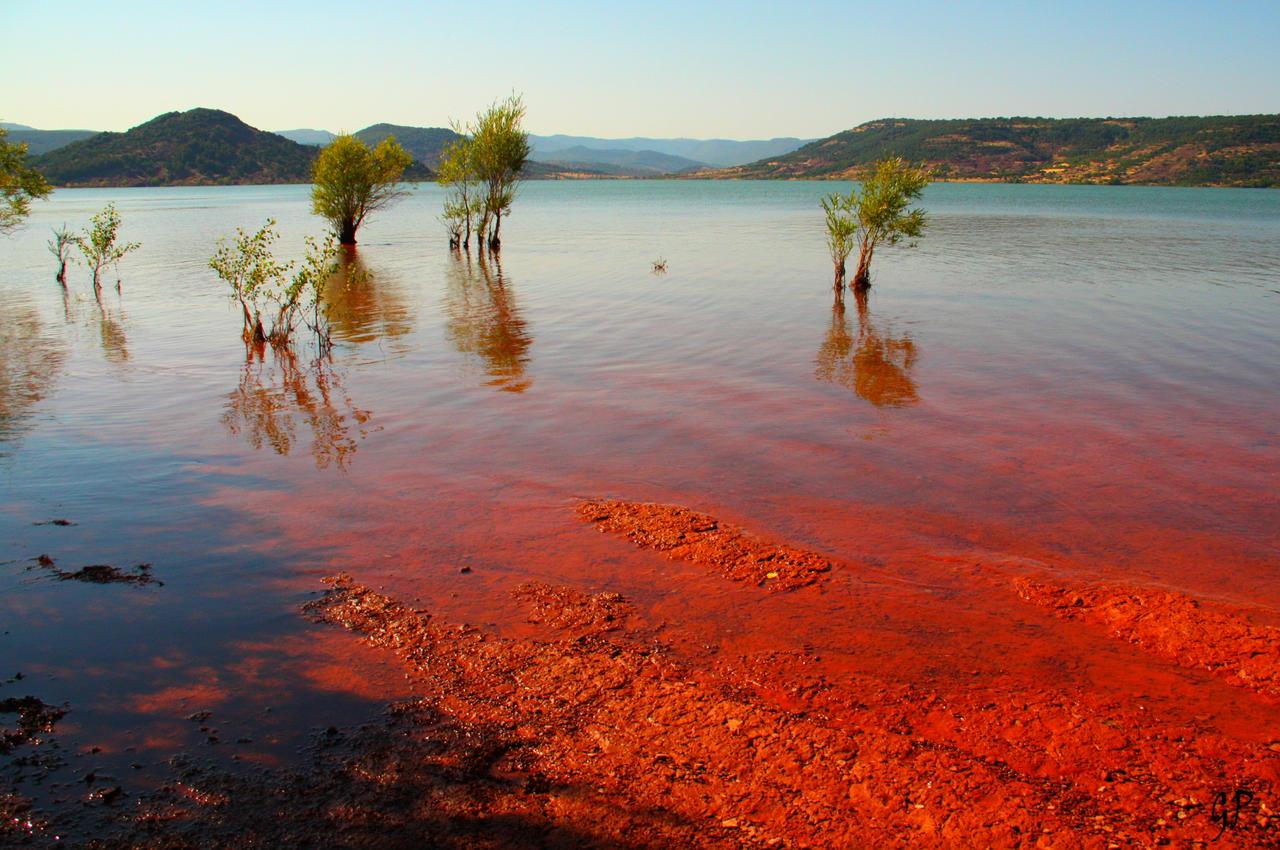 Red tide by Patguli