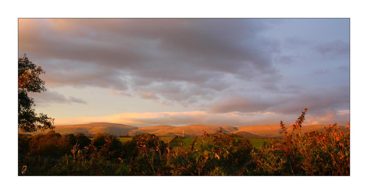Scottish autumn by Patguli