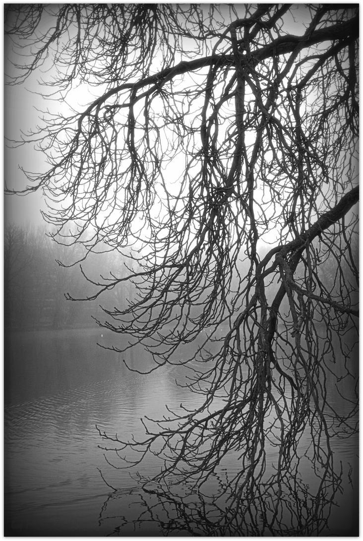 Mystery. . . by Patguli