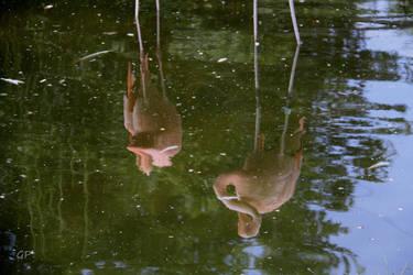 Les pieds dans l'eau by Patguli