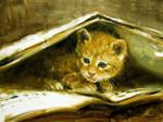 cat 6 by alrasyid