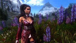 Skyrim Beautification Project Screenshot 01