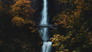 Waterfall Rock Cliff 150325 1600x900