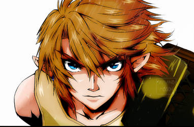 The Legend of Zelda Twilight Princess Manga Link