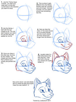 How to Draw Canines: Head
