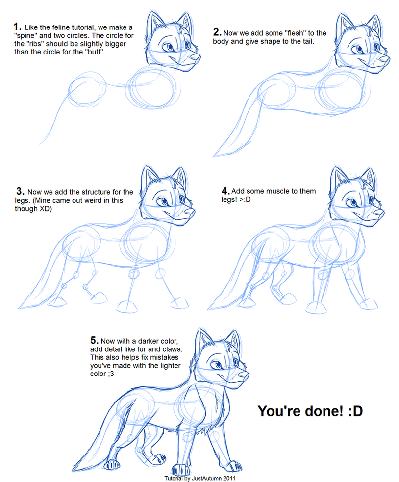How to draw canines body by justautumn on deviantart for Cartoon body tutorial