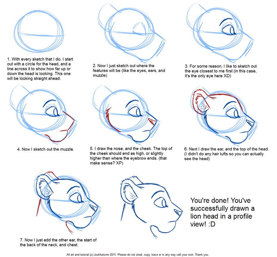 How to Draw Feline Profile Tutorial by JustAutumn on DeviantArt