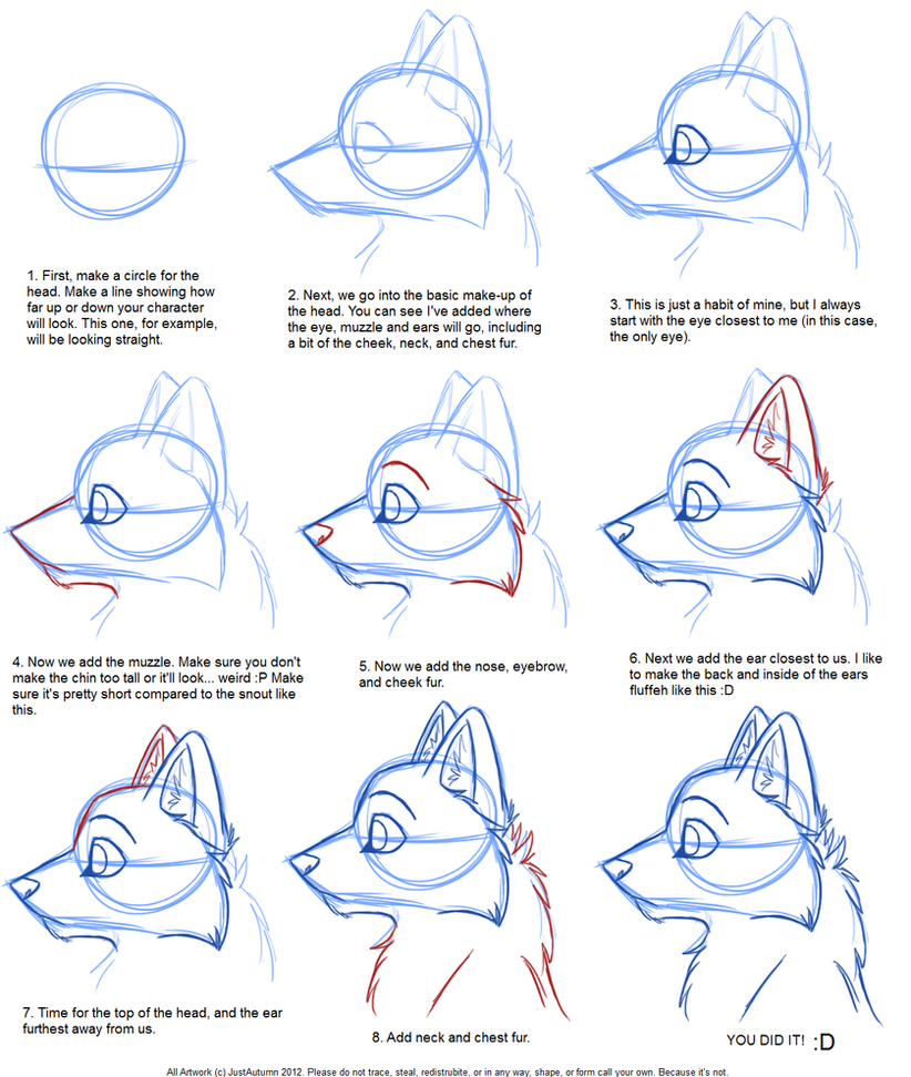 How to draw canine profile tutorial by justautumn on for Good drawing tutorials for beginners