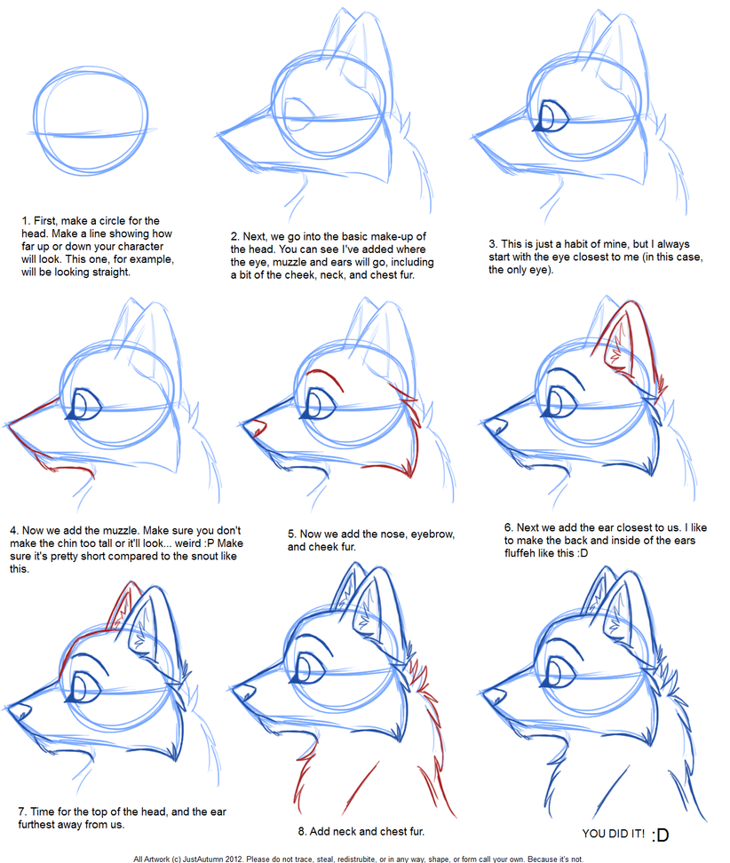 Line Art Tutorial Photo : How to draw canine profile tutorial by justautumn on