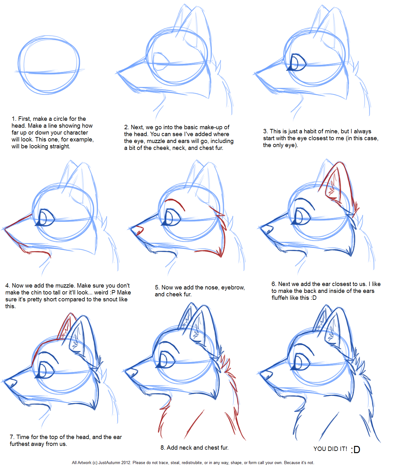 How To Draw Canine Profile Tutorial By JustAutumn On