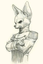 General Chihuahua by martinorona