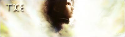 Final Fantasy Signature by rarunator