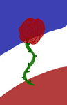 French Rose