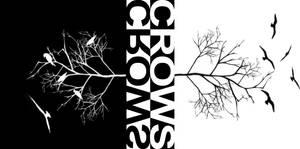 Crows by DesertViper