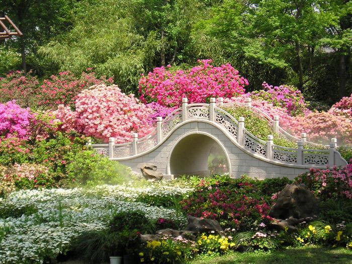 Garden and bridge by RipperBlackstaff