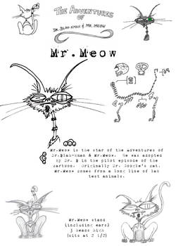 Mr. Meow in 2D