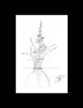 Ozarka flower