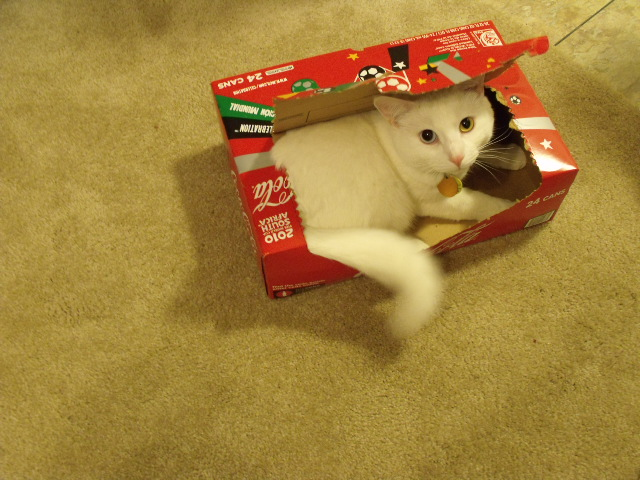 In a coke box by nufuinneog
