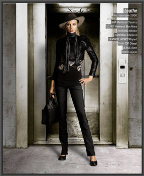 Looklet: Leather