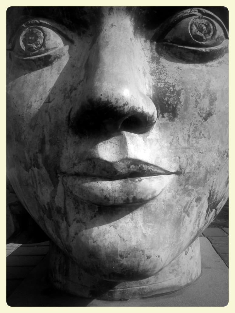 head close up by cjgittings