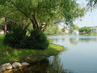 The Hidden Pond 2